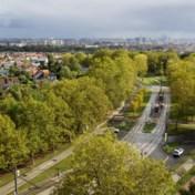 Een groen tramspoor door de stad