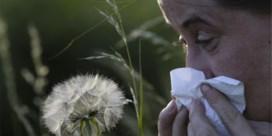 'Pollenallergie niet te verwarren met griep of covid-19'
