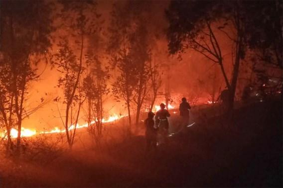 Achttien brandweerlieden en natuurgids komen om bij enorme bosbrand in China