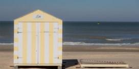 Extra controles op tweedeverblijvers: 'Sommige mensen willen hun hond komen uitlaten aan zee'