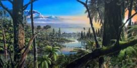 Weelderig en groen: zo zag Antarctica er 90 miljoen jaar geleden uit