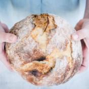 Zelf uw brood bakken? Dat kan ook zonder broodbakmachine