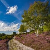 Verenigd Koninkrijk telt eerste 'supernatuurreservaat'