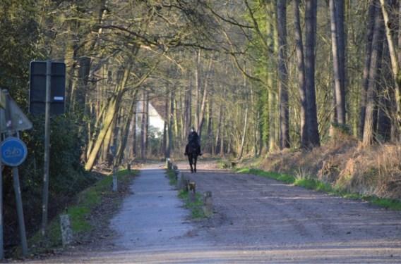 Niet toegelaten: buiten ritje maken met paard