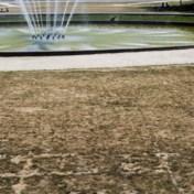 Grondwaterstanden opnieuw laag door uitblijvende aprilse grillen: 'Hopen dat zomer niet kurkdroog wordt'