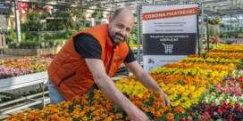 Floralux zaterdag opnieuw open, maar met maatregelen