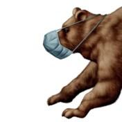 Wat kunnen we leren van vroegere beren(markten)?