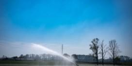 Hopen op een natte zomer: 'Kans op waterschaarste wordt onaanvaardbaar groot'
