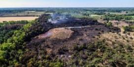 Brand in natuurgebied De Liereman mogelijk aangestoken
