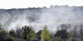 Grote bosbrand in provincie Luik