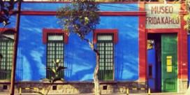 Virtueel op bezoek bij Frida Kahlo