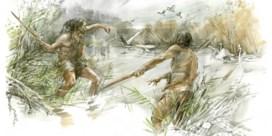 300.000 jaar oude houten boemerang ontdekt