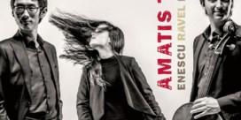 Amatis Trio. Enescu - Ravel - Britten