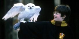 Daniel Radcliffe leest Harry Potter voor
