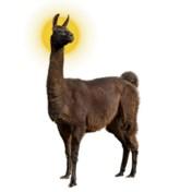 De lama als proefkonijn