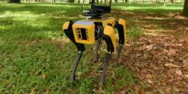 Singapore zet robothonden in bij strijd tegen coronavirus