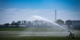 Grondwaterstanden alweer erg laag: 'Wees zuinig met water'