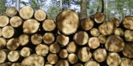 200 hectare natuur illegaal voor de bijl