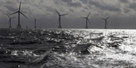 Jaarrapport Vreg laat recorddynamiek op energiemarkt zien