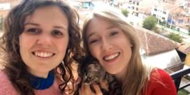 Politie doet huiszoeking om straatkat Lee te vinden
