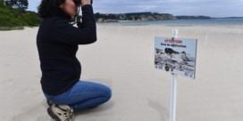Fransen mogen deze zomer op vakantie in eigen land
