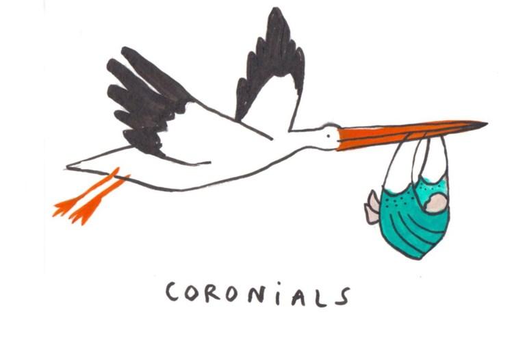 Waarom België zo sterk staat in de race naar een vaccin, de coronadoden nog lang te leven hadden en covid-19 het strand laat bloeien