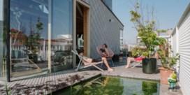BINNENKIJKEN. Zwemvijver op de Molenbeekse daken