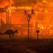 Rook bosbranden Australië kostte aan honderden mensen het leven
