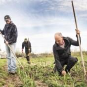 Vrouw schenkt 8 hectare grond aan bioboeren