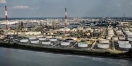 Haven wil CO2-uitstoot halveren