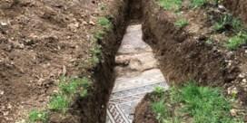 Eeuwenoude mozaïekvloer ontdekt onder wijngaard in Italië