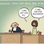 Cartoon van de dag - mei 2020