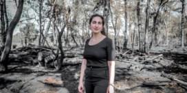 Het bos is niet het klimaat