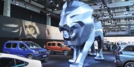 Autoproducenten snoeien en bedelen om te overleven