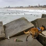 Lichaam verdronken surfer teruggevonden in Scheveningen