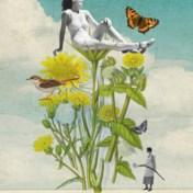 Waarom tuinieren goed is voor de ziel