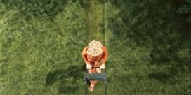 Hoe vaak moet je het gras maaien?