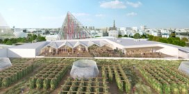 Grootste stadsboerderij van Europa tuiniert in de lucht