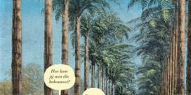 'Het mysterie van de kokosnoot' (2016) Zaza