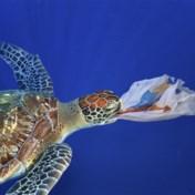 Plastic verpakkingen twintig jaar in zee en nog 'zo goed als nieuw'