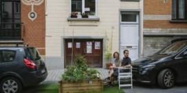Commotie rond Schaarbeeks straattuintje