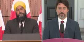 Trudeau steunt oppositielid dat collega 'racist' noemde