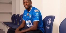 Het houdt niet op: AA Gent haalt nu ook Dino Arslanagic gratis op bij Antwerp,  recordtransfer Nurio officieel