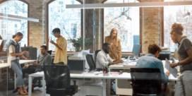 Bedrijven Antwerpen-Waasland maken werk van diversiteit