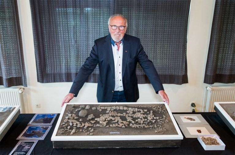 11 miljoen jaar oude resten van schildpad gevonden in Duitsland