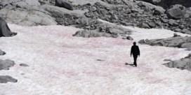 Italiaanse gletsjer slaat roze uit