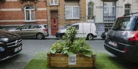 'Illegaal stadstuintje' in Schaarbeek staat terug op zijn oude plaats