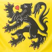 'We willen de Vlaamse Leeuw uit politiek vaarwater halen'