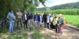 Plan Steenuil stelt bosuitbreiding de komende vijf jaar voorop