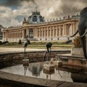 Diaspora zet Congocommissie meteen onder hoogspanning